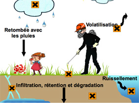 Pesticides et cycle de l'eau